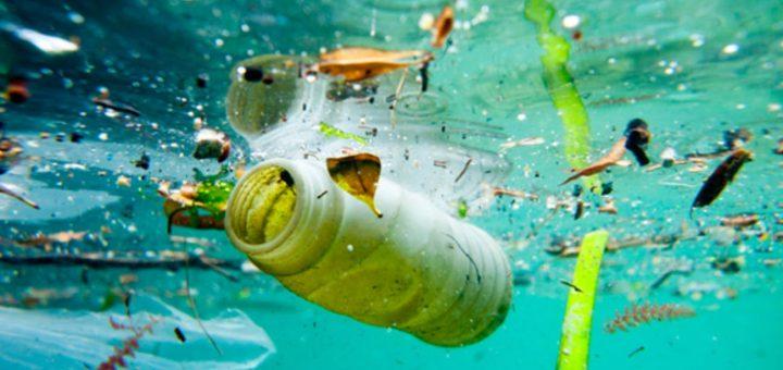 Mikroplastik Maddeler İnsan Dışkısında Yer Alıyor