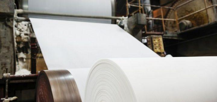 Bir Ton Kağıt İçin Ne Kadar Ağaç Kesilir?