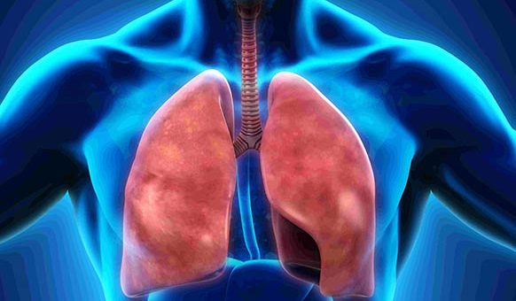 Solunum Sistemi: İşlevi, Hastalıkları